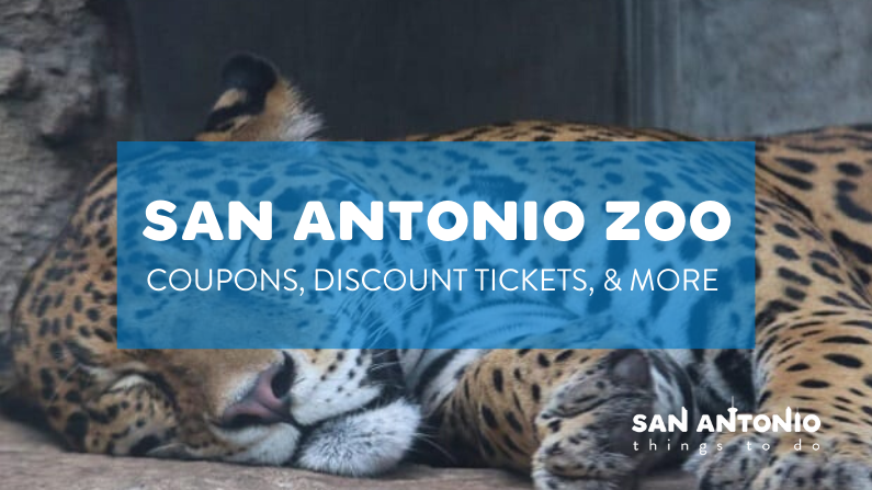 San Antonio Zoo Coupons and Discount Tickets: Top Ways to Save Big in 2020